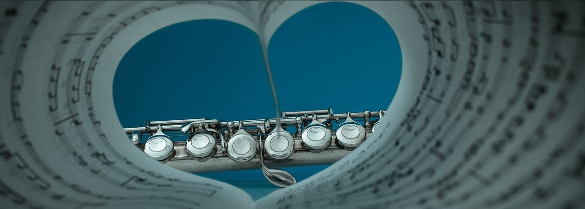 accesorios para flauta travesera